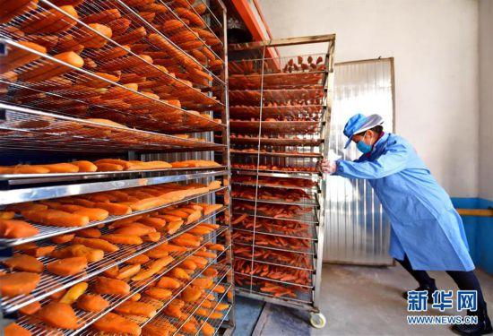 """(社会)(1)河北滦州:农产品深加工""""大商机"""""""