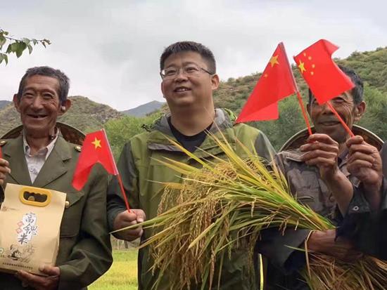 黄土地里的稻花香