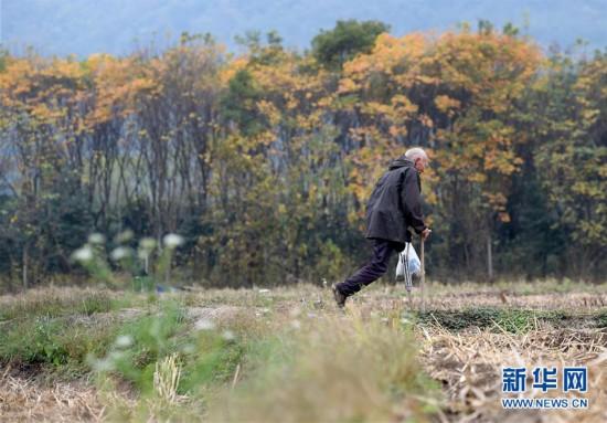(社會)(1)獨腿老人酈禮元:從自立自強到保護環境
