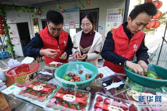 (社会)(1)浙江长兴:走村入户开展志愿服务