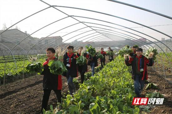 """""""开心农场"""",让学生回归自然,成就育人新模式"""