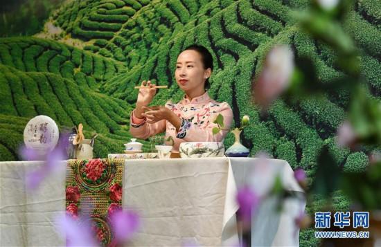 (社会)(1)彝家女的多彩茶艺人生
