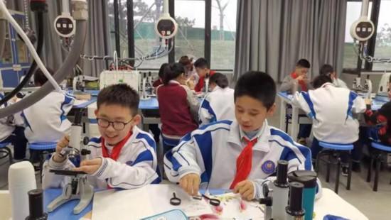 http://www.jiaokaotong.cn/zhongxiaoxue/281432.html