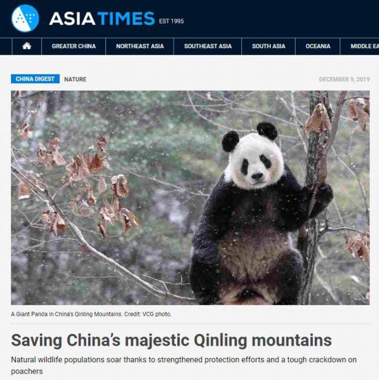 【中国那些事儿】秦岭野生动植物数量不断增长 外媒:国家公园建设助力珍稀生物保护