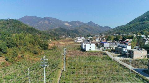 江西上栗:因地制宜发展产业