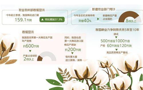 中国棉花产业大而不强,规模效益仍是关键