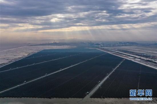 浙江省内最大规模海涂光伏发电项目正式投运