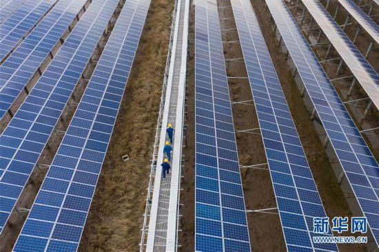 (经济)(2)浙江省内最大规模海涂光伏发电项目正式投运