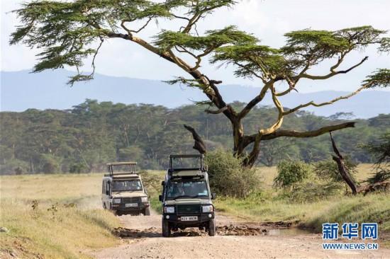 (国际)(1)肯尼亚纳库鲁国家公园假期引游人