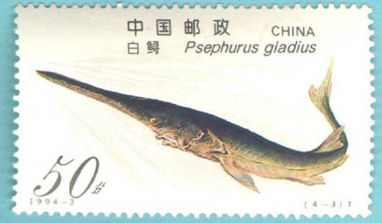 ハシナガチョウザメがデザインされた切手