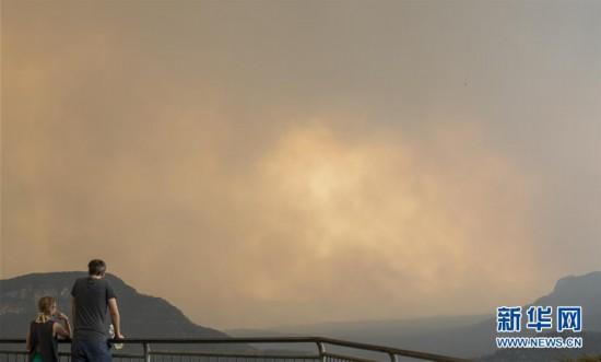 (国际・图文互动)(1)综述:澳大利亚林火肆虐 将设新机构救灾