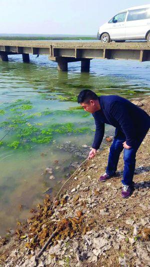 连云港9人非法猎捕145万只蟾蜍被判修复生态环境玩地下城的电脑配置