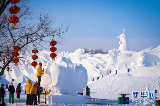 (社会)(3)哈尔滨:雪雕好手秀技艺