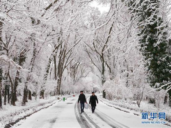 (新华视界)(4)塔什干降雪