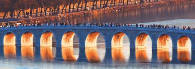 中国成为网红经济发动机合乎规矩才能长久发展