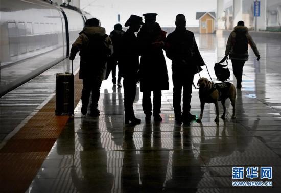 (社会)(8)导盲犬坐高铁:让视障旅客出行无障碍