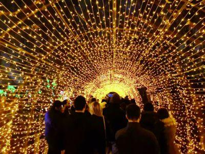 中国彩灯点亮纽约冬夜孙子涵所有的歌