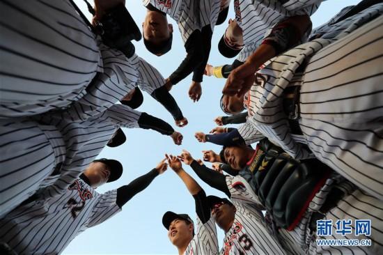 (体育)(9)棒球――中职棒总决赛:北京猛虎夺冠