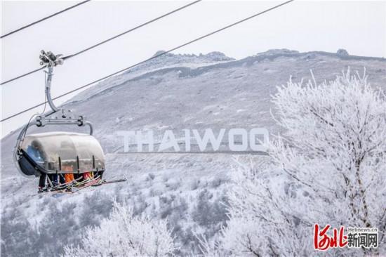 京张高铁开通半月:冰雪激情升温 同城效应凸显