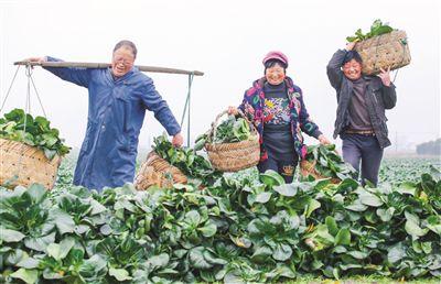 如何讓8000萬江蘇人生活更美好?