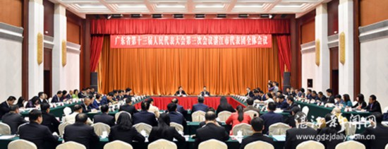 湛江代表团审议省人大常委会和省