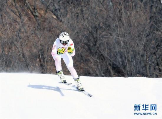 (全冬会)(5)高山滑雪――女子滑降比赛赛况