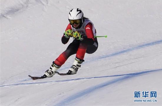 (全冬会)(9)高山滑雪――女子滑降比赛赛况