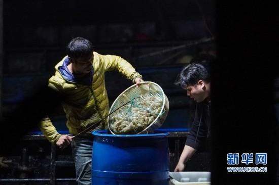 福建长乐:春节将至 海鲜满仓
