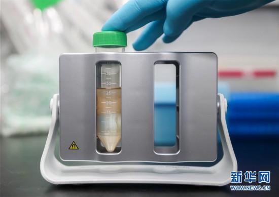 (聚焦疫情防控)(1)上海:新型冠状病毒mRNA疫苗研发正式立项