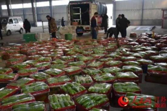 圖為東海縣北芹村免費捐贈的1.25萬公斤蔬菜一角。東海縣委宣傳部供圖