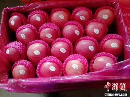 平凉苹果进入香港市场 系疫情后甘肃首批出口业务