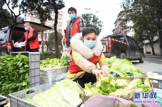 (聚焦疫情防控)(3)重庆:疫情下的乡村蔬菜配送小队