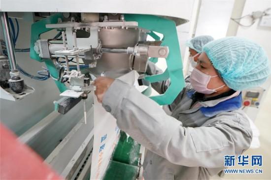 (聚焦疫情防控)(5)黑龙江:粮油加工企业加紧生产