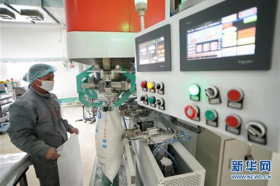 (聚焦疫情防控)(3)黑龙江:粮油加工企业加紧生产