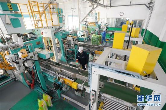 (聚焦疫情防控)(1)黑龙江:粮油加工企业加紧生产