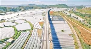 昆明晋宁将建国际花卉电商物流中心
