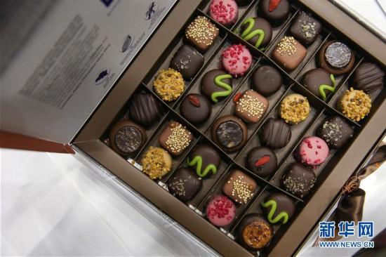 (国际)(4)第七届布鲁塞尔巧克力沙龙揭幕