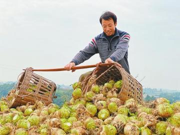 http://www.qwican.com/jiaoyuwenhua/2991627.html