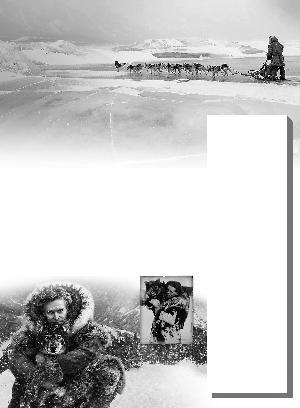 《多哥》:英雄雪橇犬拯救小孩的故事