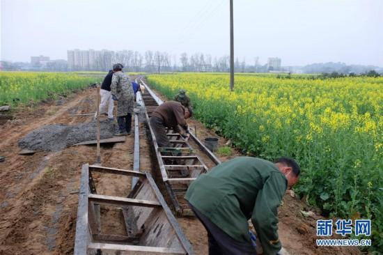 (图文互动)(1)雨蕴万田绿 风来满眼春――南方水稻主产区春耕备耕见闻