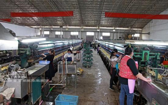 環江:出台多項優惠政策 支持企業復工復產