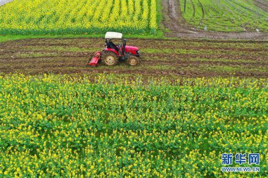 #(经济)(1)惊蛰到 农事忙