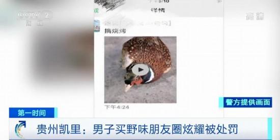 正规的网络赚钱方式:贵州凯里:男子买野味发朋友圈炫耀被处罚