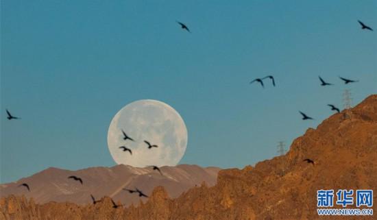 """(社會)(2)拉薩:""""超級月亮""""現天宇"""