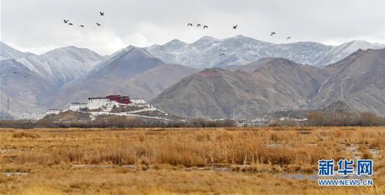 (美丽中国)(1)初春拉鲁湿地