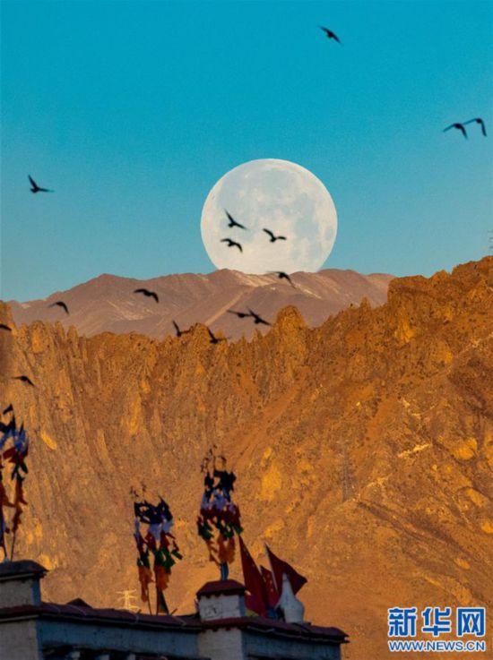 """(社會)(4)拉薩:""""超級月亮""""現天宇"""