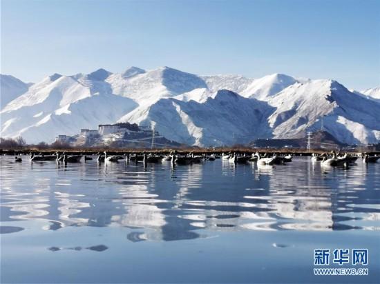 (美丽中国)(6)布宫雪景