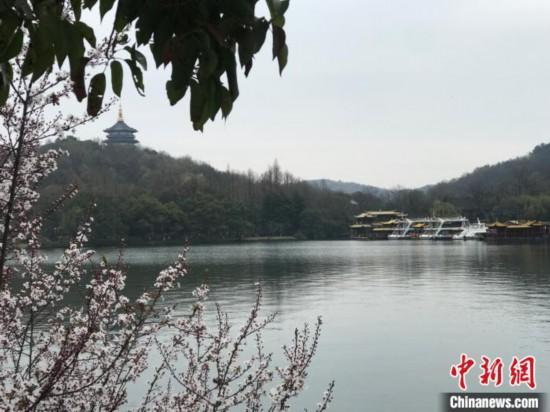 杭州:55家A级景区免费开放97家宾馆住宿降价