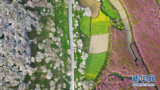 贵州:一路繁花相伴