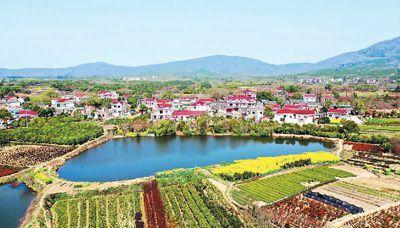 安徽含山:種苗種花種春光